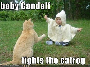 baby Gandalf  fights the catrog