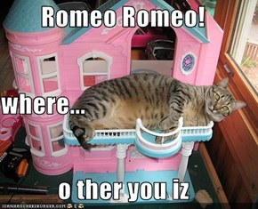 Romeo Romeo! where... o ther you iz