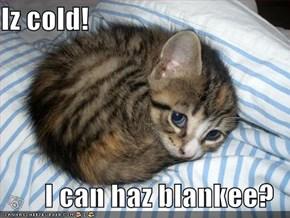 Iz cold!    I can haz blankee?