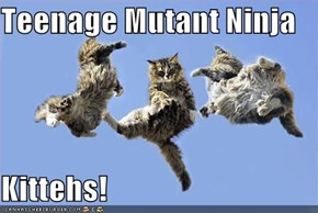 Teenage Mutant Ninja  Kittehs!