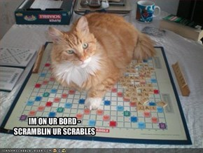 IM ON UR BORD - SCRAMBLIN UR SCRABLES