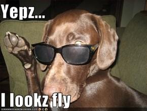 Yepz...  I lookz fly