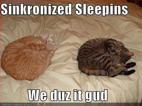 Sinkronized Sleepins  We duz it gud