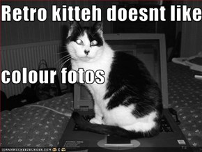 Retro kitteh doesnt like colour fotos