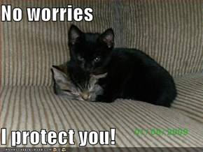 No worries  I protect you!