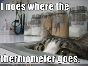 I noes where the  thermometer goes.