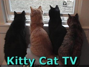 Kitty Cat TV