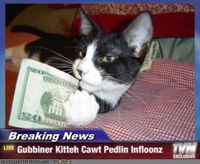 Breaking News - Gubbiner Kitteh Cawt Pedlin Infloonz