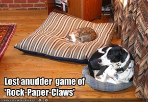 Lost anudder  game of 'Rock-Paper-Claws'