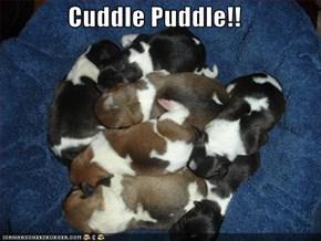 Cuddle Puddle!!