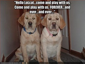 """Hello LoLcat...come and play with us. Come and play with us. FOREVER...and ever...and ever..."""