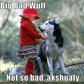 Big Bad Wulf  Not so bad, akshualy