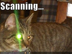 Scanning...