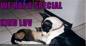WE HAZ A SPECIAL  KIND LUV