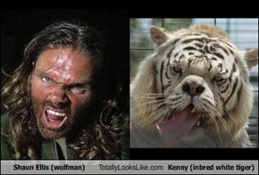 Shaun Ellis (wolfman) Totally Looks Like Kenny (inbred white tiger)