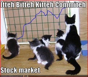 Itteh Bitteh Kitteh Commiteh  Stock market