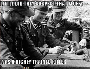 LITTLE DID THEY SUSPECT THAT FLUFFY  WAS A HIGHLY TRAINED KILLER