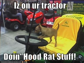 Iz on ur tractor  Doin' Hood Rat Stuff!