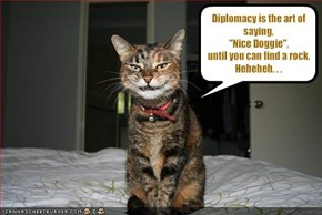 Diplomacy is the art of saying, 