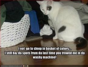 I not  go to sleep in basket of colors...I still haz da spots frum da last time you trowed me in da washy machine!