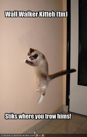 Wall Walker Kitteh (tm)