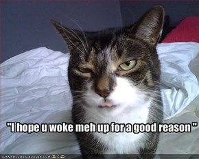 """I hope u woke meh up for a good reason """