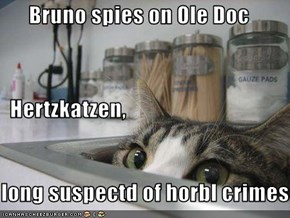 Bruno spies on Ole Doc    Hertzkatzen, long suspectd of horbl crimes