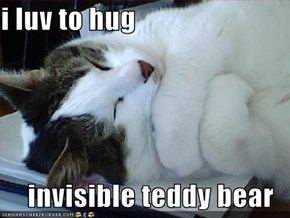 i luv to hug  invisible teddy bear