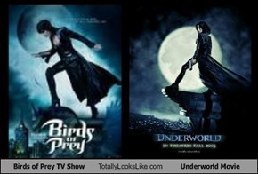 Birds of Prey TV Show Totally Looks Like Underworld Movie