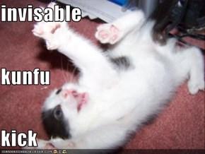 invisable kunfu kick