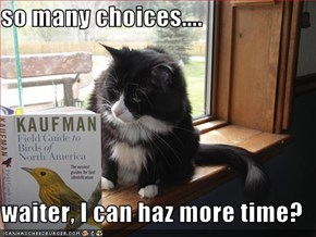 so many choices....  waiter, I can haz more time?