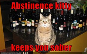 Abstinence kitty  keeps you sober