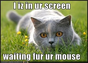 I iz in ur screen  waiting fur ur mouse
