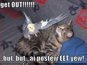 get OUT!!!!!!  ..but, but...ai postew EET yew!