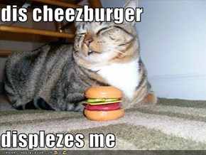 dis cheezburger  displezes me