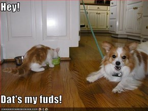 Hey!  Dat's my fuds!