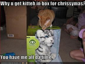 Why u get kitteh in box for chrissymas?  You have me all da time.