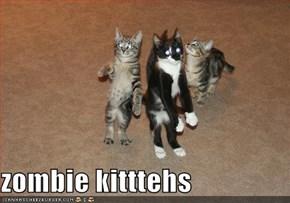 zombie kitttehs
