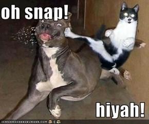 oh snap!                            hiyah!