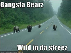 Gangsta Bearz  Wild in da streez