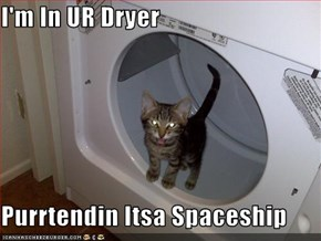 I'm In UR Dryer  Purrtendin Itsa Spaceship