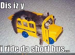 Dis iz y  i ride da short bus...
