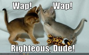 Wap!            Wap!        Righteous, Dude!