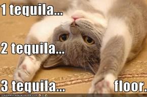 1 tequila...  2 tequila... 3 tequila...                 floor.