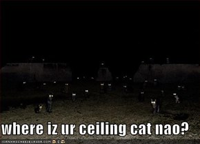where iz ur ceiling cat nao?