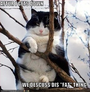 "AFTUR I GETS DOWN  WE DESCUSS DIS ""FAT"" THING"