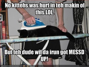 No kittehs was hurt in teh makin of this LOL.