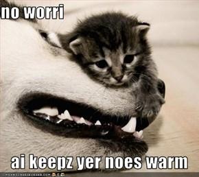 no worri  ai keepz yer noes warm