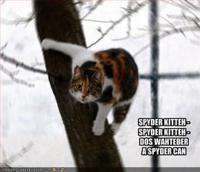 SPYDER KITTEH - SPYDER KITTEH - DOS WAHTEBERA SPYDER CAN