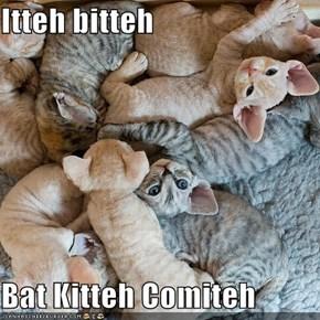 Itteh bitteh  Bat Kitteh Comiteh